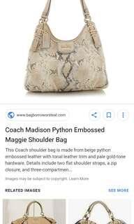 Coach madison python
