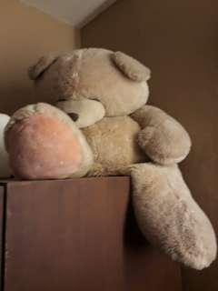 Boneka teddy bear ukuran besar
