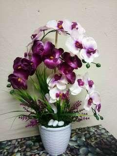 Bunga Orkid Murah Home Furniture Carousell Malaysia