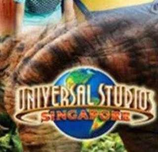 Immed issue: USS SEA ACW all attractions Sentosa Singapore