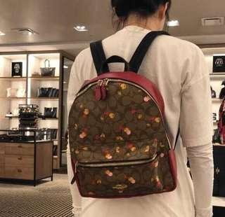 🚚 Coach backpack