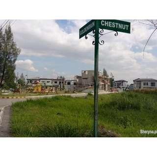120sqm Residential Lot GREENWOODS Exec Village Pasig FOR SALE