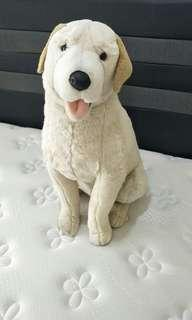 Pre-loved stuffed dog Golden Retriever
