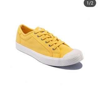 Paladium cowok yellow