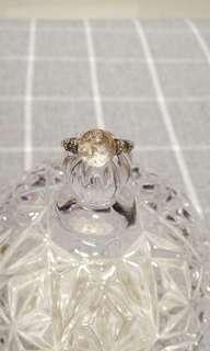Rings/Earring (various)