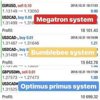 Copy Trade October Profit