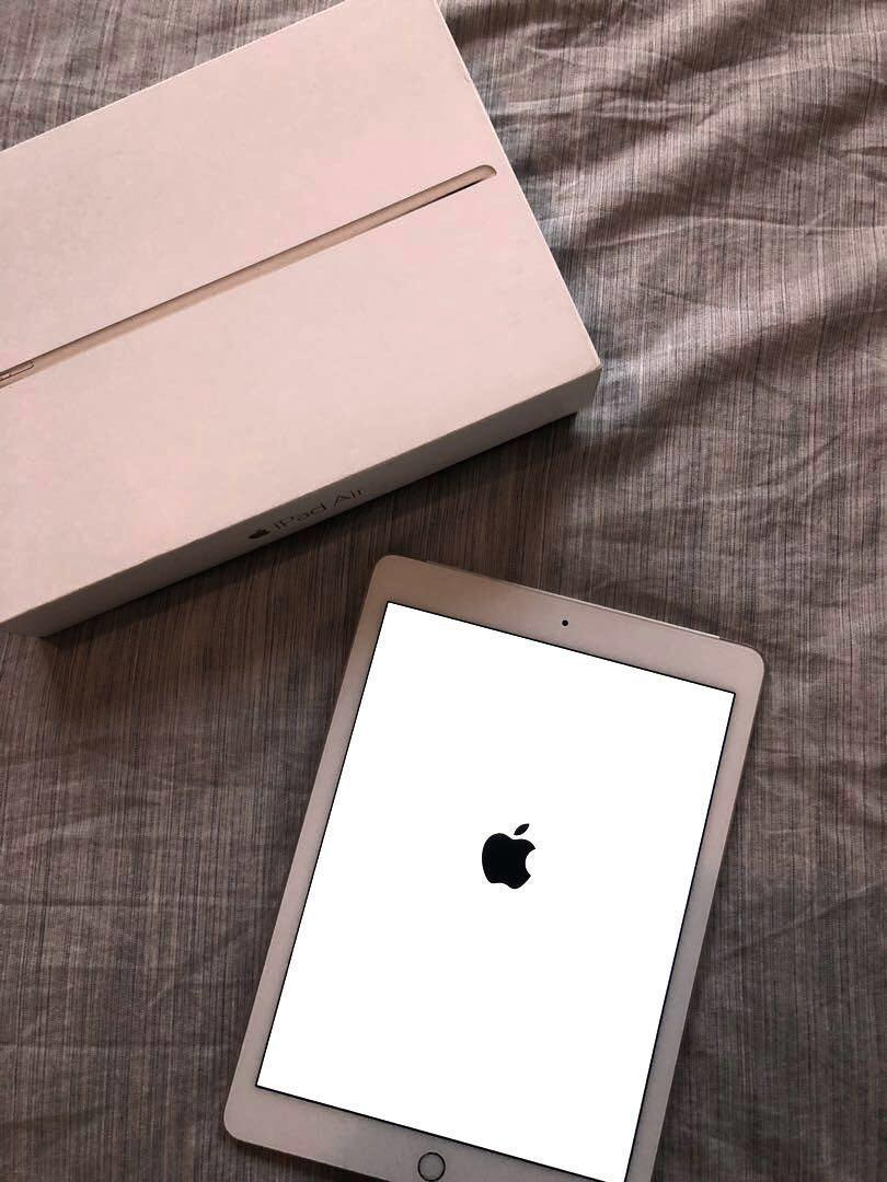 iPad Air 2 16G in Gold( Wifi and Cellular ) with sleeve