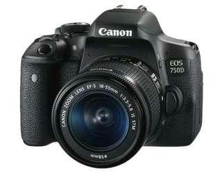750D canon eos kredit
