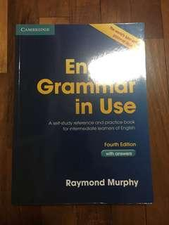 Grammar in use English