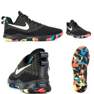 ccc3fc0c3a6 NIKE LEBRON WITNESS Shoes