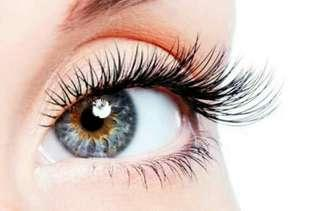 Angel Wing Eyelash Extension