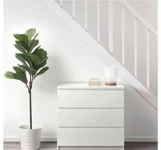 IKEA Fiddle Leaf Fig Tree