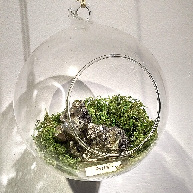 Glass Terrarium Furniture Home Decor Others On Carousell