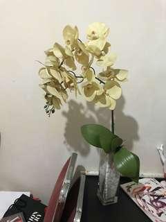 vas plus bunga anggrek