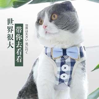 🚚 貓咪 外出背帶 藍色 全新