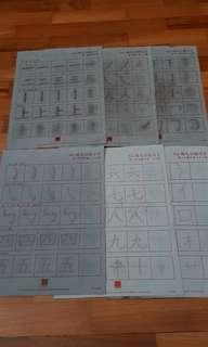 Berries N2 Exercise Chinese worksheet | rewritable