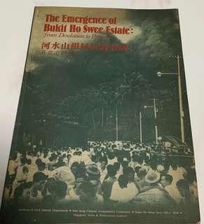 The Emergence of Bukit Ho Swee