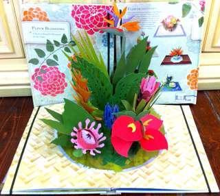 Flower 花卉 pop up book 立體書