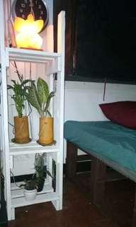 Plant or display stand