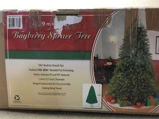 Christmas Bayberry Spruce Tree