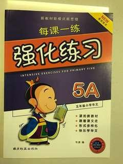 Primary 5 Chinese Assement book
