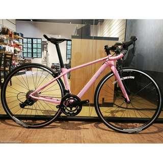 LIV Langma SL 3 (GIANT 女裝破風單車) 公路車 Road Bike ⭐️歡迎查詢