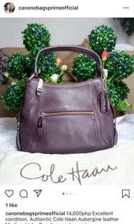 Authentic Cole Haan Hobo Bag