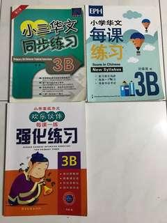Chinese Assessment Books Primary 3