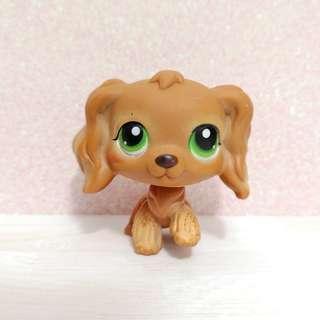Littlest Pet Shop lps Spanielc(authentic)