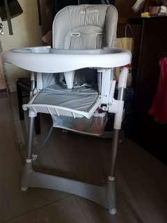 Giant Carrier High Chair for baby
