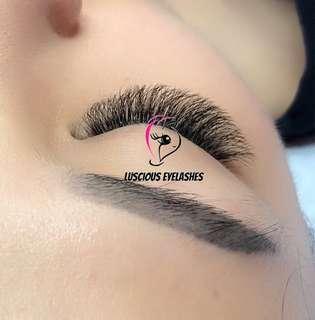 Eyelash Extensions By Qualified Lash Artist