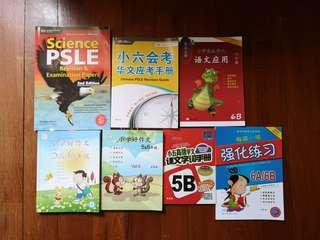 books for p5 and 6