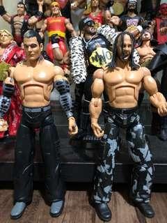 Wwe jakks Hardy Boyz