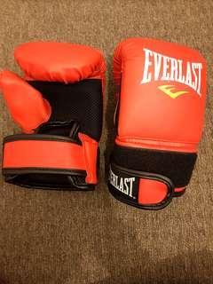 Everlast training gloves boxing gloves