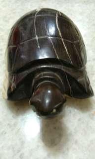 天然木化石龜