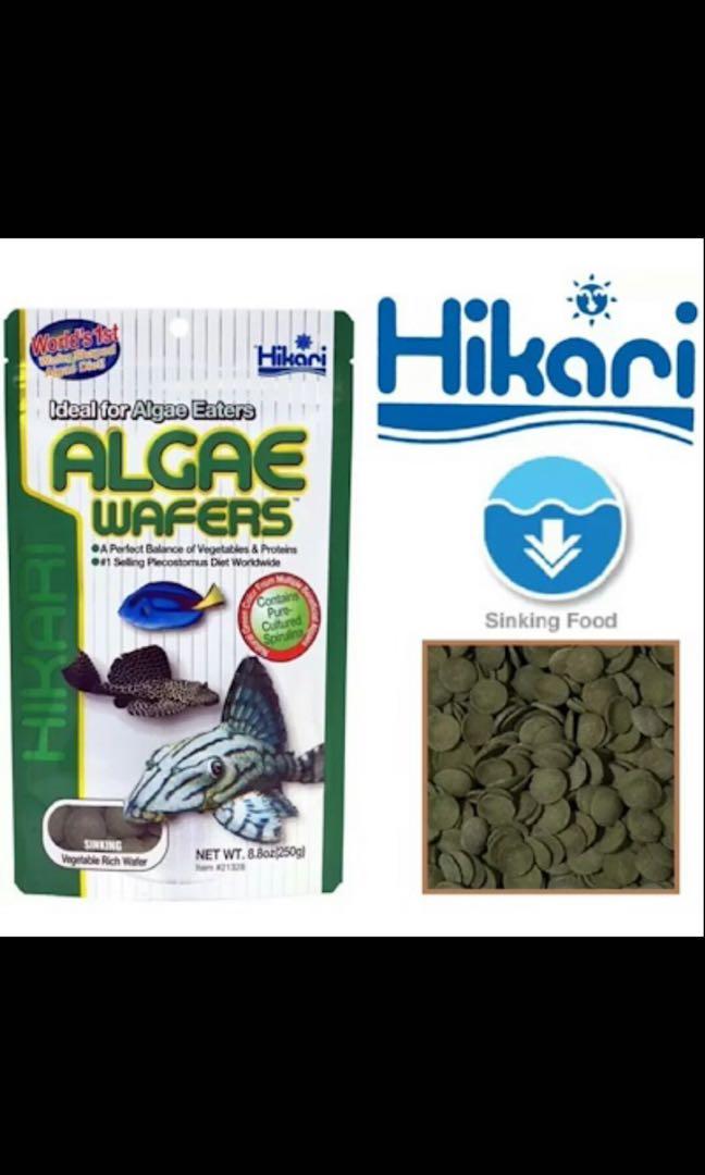 Hikari Algae Wafers 250g Ideal For Pleco Algae Eaters Aquarium