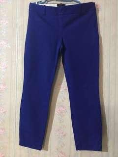J.Crew royal blue ankle pants. Side zipper. Style: Minnie