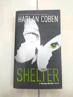 Novel- Shelter (mystery and thriller)