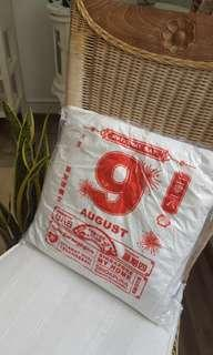 National Day Pillow