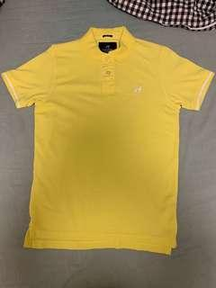 Sacoor brothers Men POLO