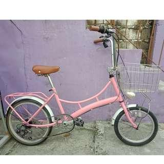 RAYCHELL CRUISER BIKE (FREE DELIVERY AND NEGOTIABLE!) not folding bike