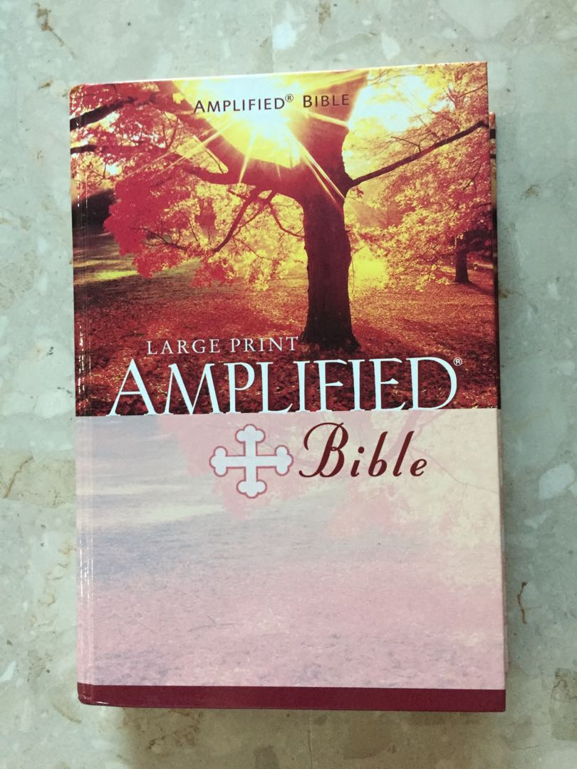 Large print amplified bible by Zondervan, Books & Stationery