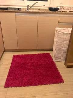 🌸High pile hot pink carpet rug
