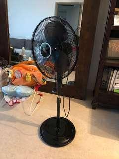 New standing fan