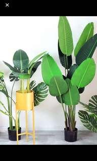 Artificial plant ( 😍 80cm)  Promotion price ‼️‼️‼️