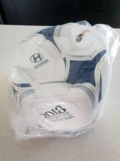 RUSSIA FIFA WORLD CUP SOCCER BALL / FOOTBALL (NEW)