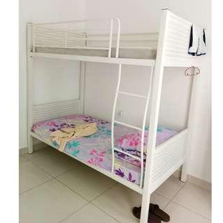 Last 2(80% New) Double decker metal bed frame(Without Bed)