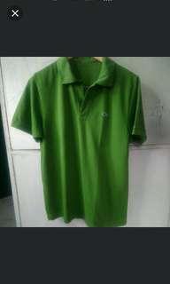 Lacoste Mint Green