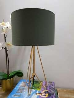 Rose Gold and Khaki Green/Grey Table Lamp