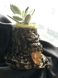 Powertex vase with succulent plant